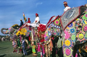 Festival de l'éléphant